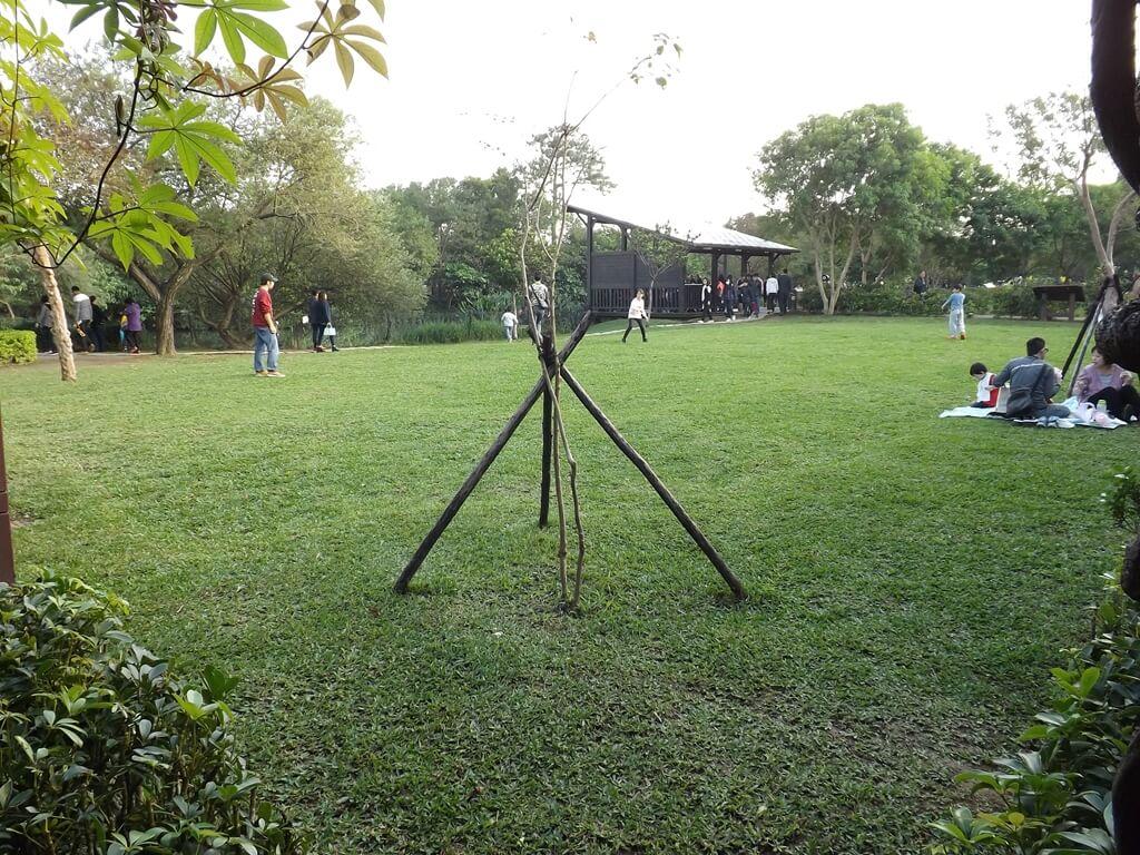 八德埤塘自然生態公園的圖片:隨處都是開放式草皮,可以野餐