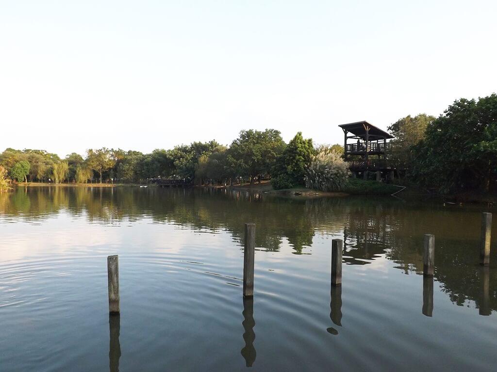 八德埤塘自然生態公園的圖片:埤塘的高架涼亭
