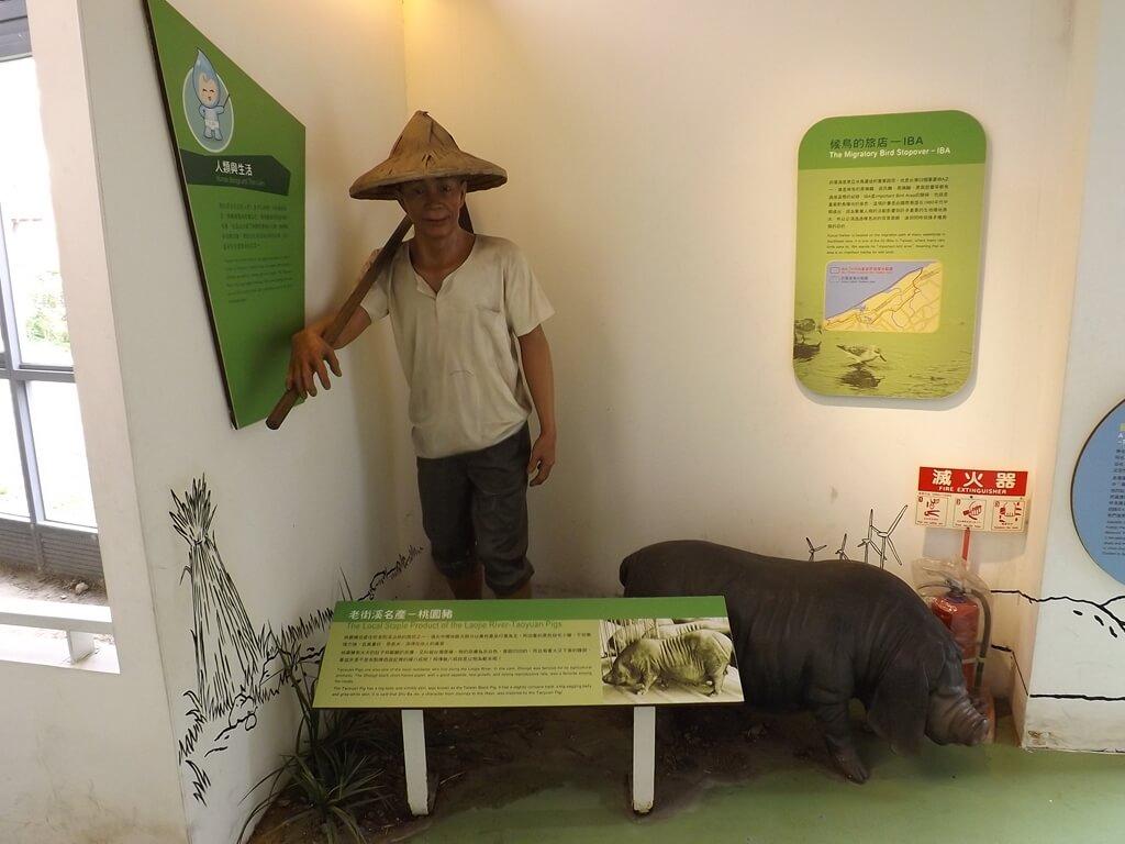 中壢老街溪河川教育中心的圖片:老農夫與黑豬