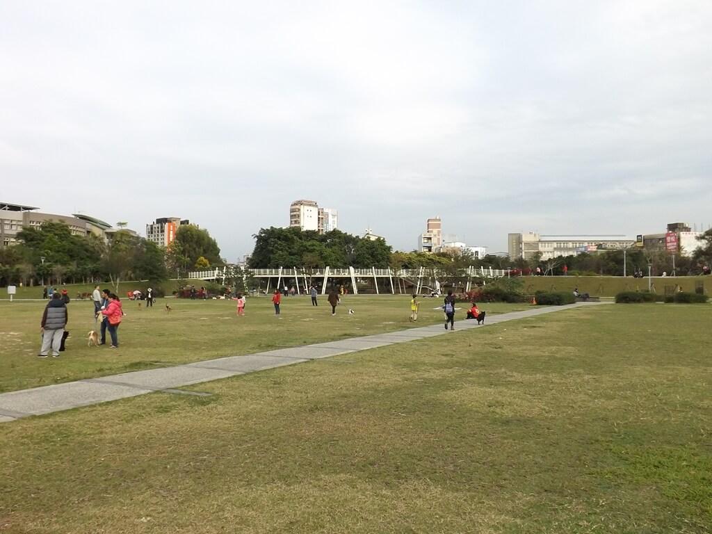 平鎮新勢公園的圖片:公園中央大草皮