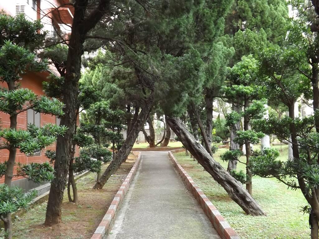 平鎮褒忠祠(義民廟)的圖片:廟旁進入公園的小徑