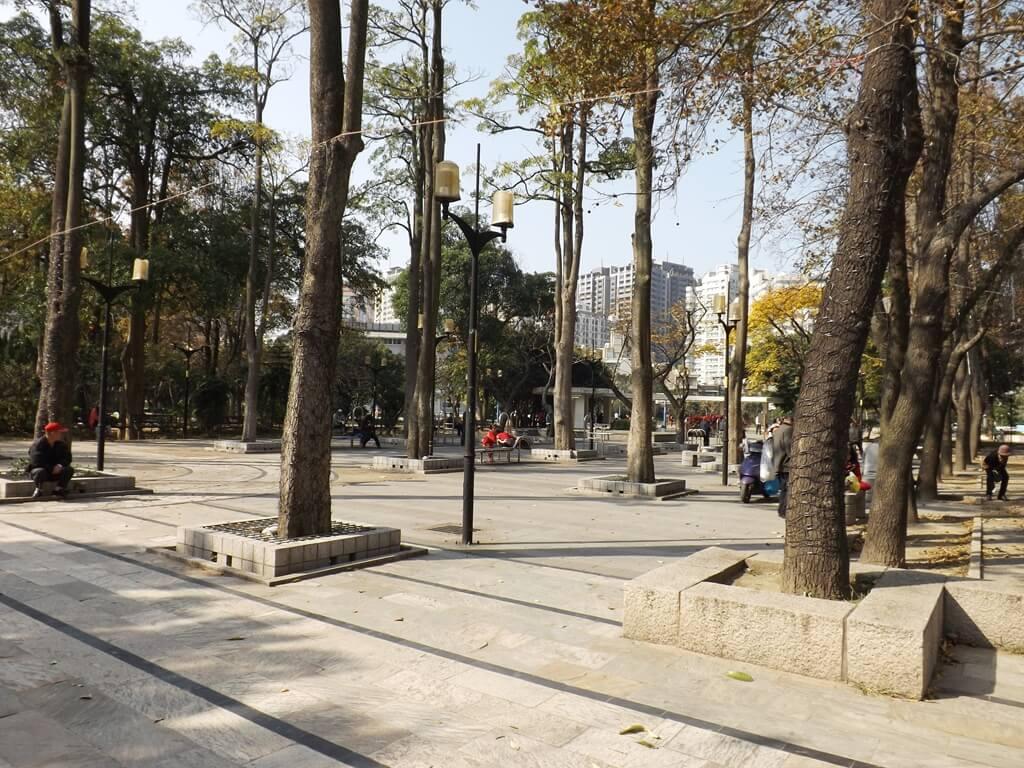 中壢中正公園的圖片:公園內樹木林立