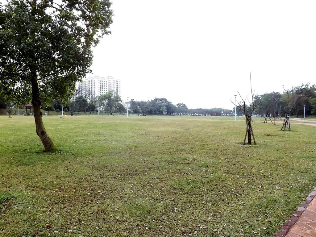 龍岡萬坪公園的圖片:公園的綠草皮