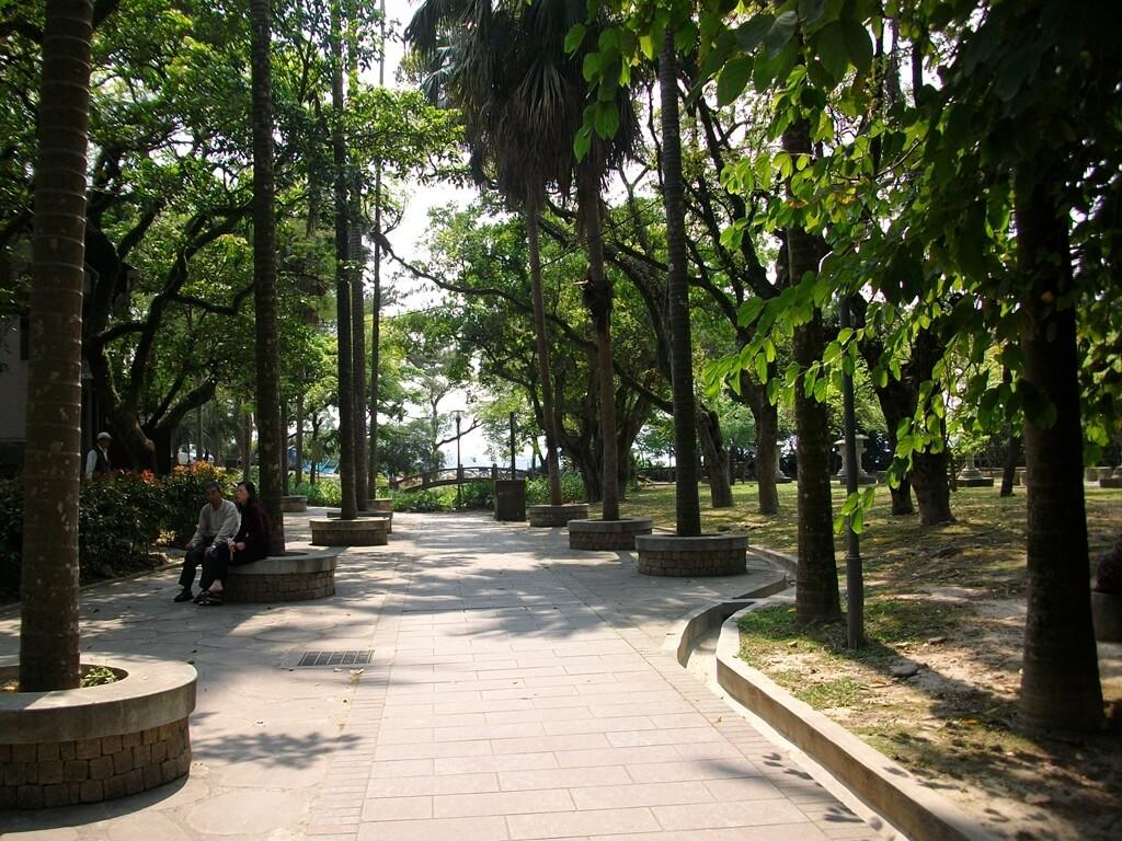 大溪中正公園的圖片:大樹林立的步道