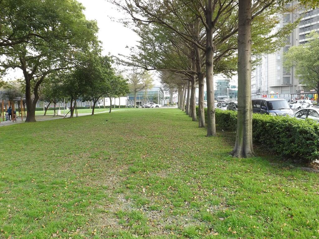 中壢元生公園的圖片:公園內有大面積的綠地及整齊的樹木