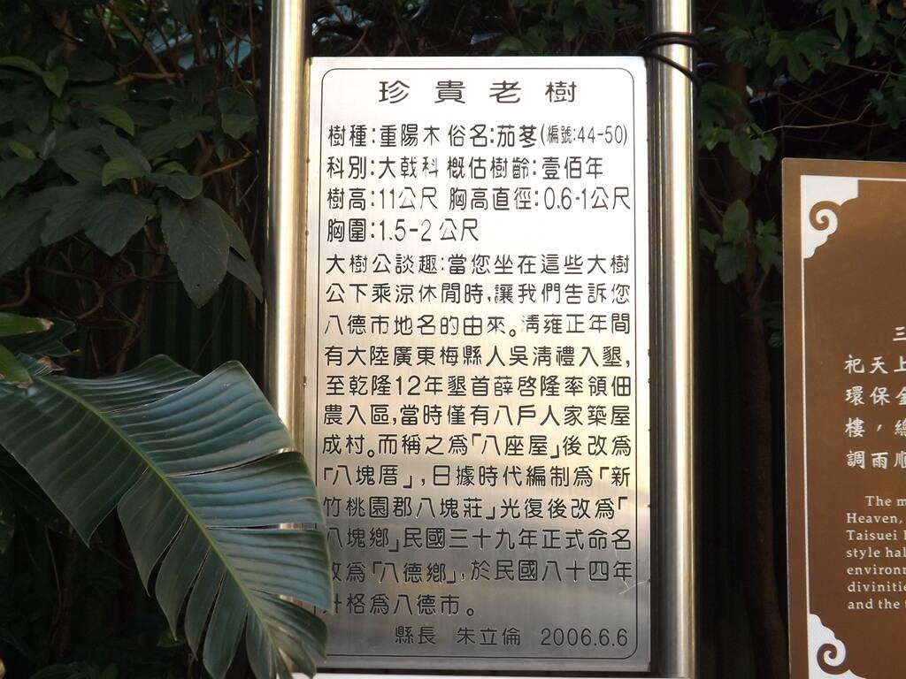 八德三元宮的圖片:三元宮前廣場旁栽種的珍貴老樹解說看板