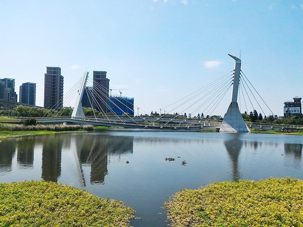 青塘園的圖片:極為優美的青塘橋與湖面美景
