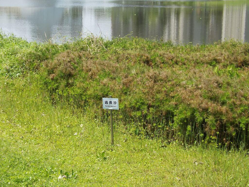 青塘園的圖片:過長沙