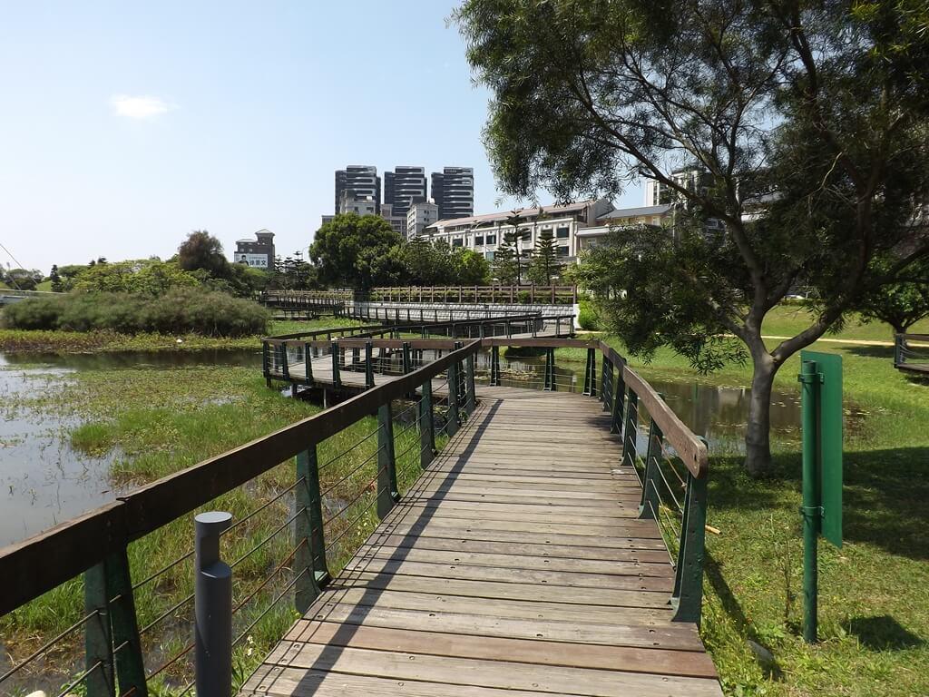 青塘園的圖片:木板鋪設的環池步道