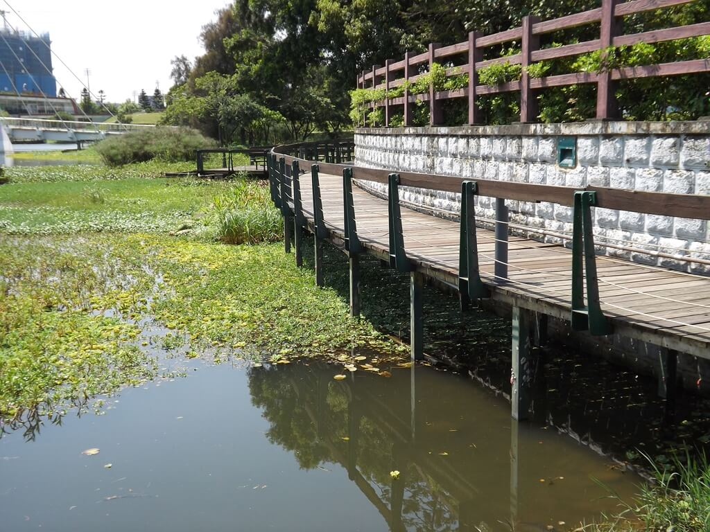 青塘園的圖片:池水邊的人行步道就在水面上