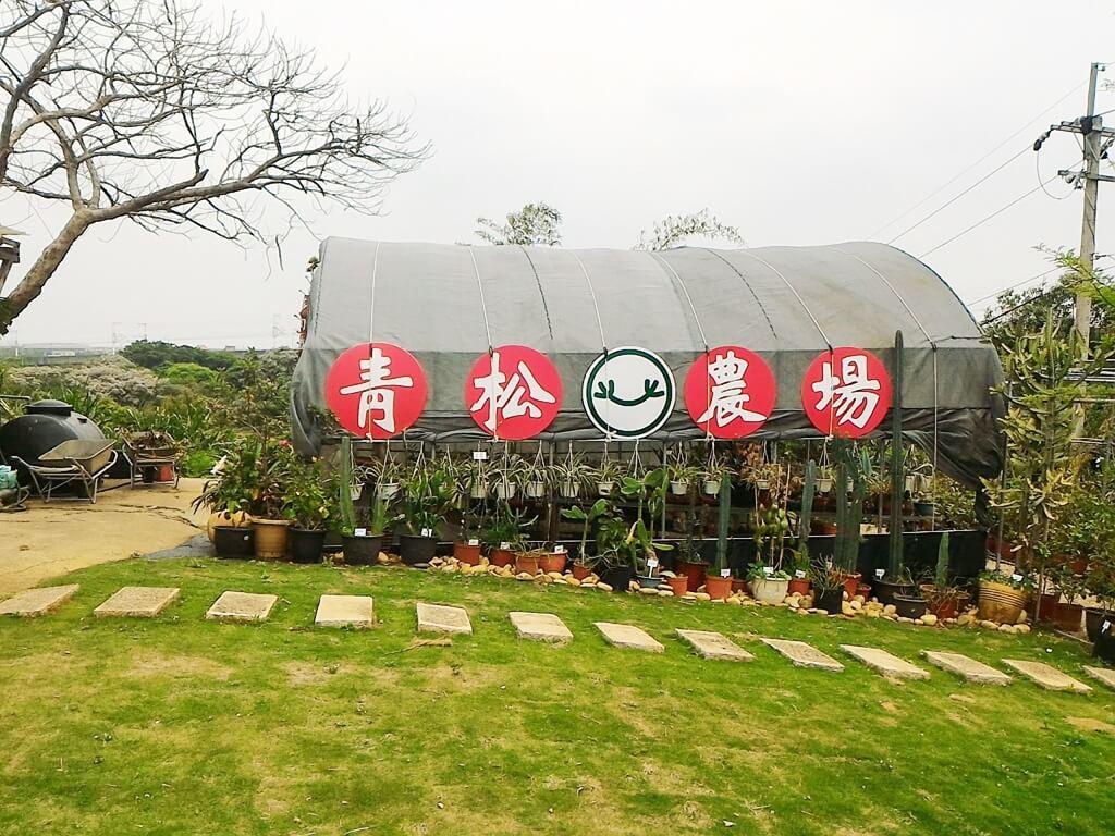 青松農場的圖片:多肉植物區的拍照景