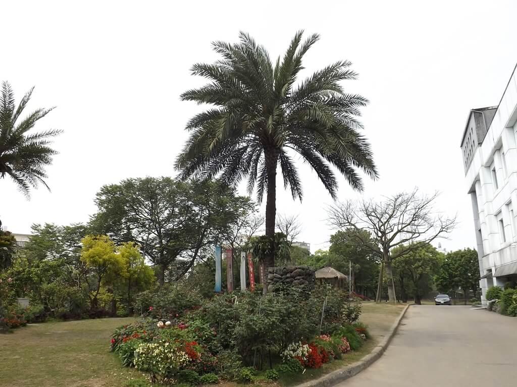 雅聞魅力博覽館的圖片:園區內有許多大型的樹種