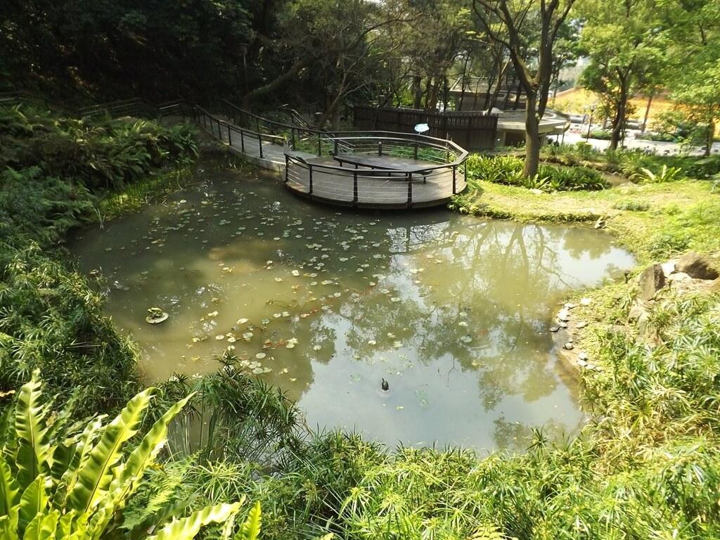 虎頭山公園(桃園市)的圖片:三疊水池的其中一層
