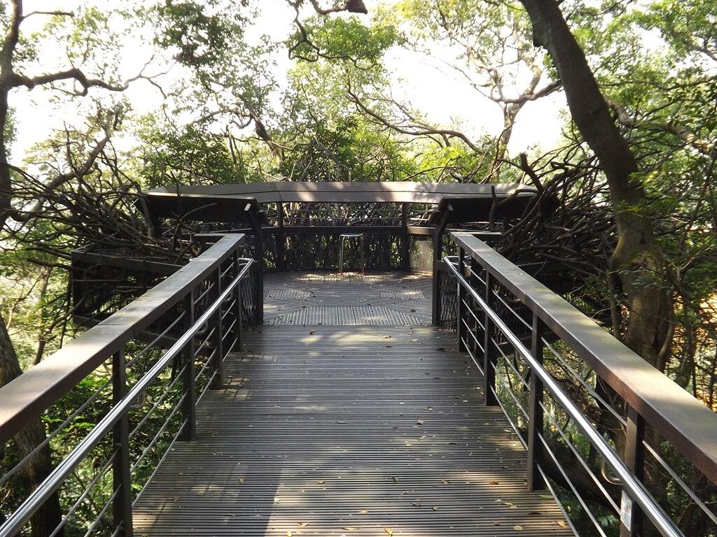 虎頭山公園(桃園市)的圖片:松鼠觀景台
