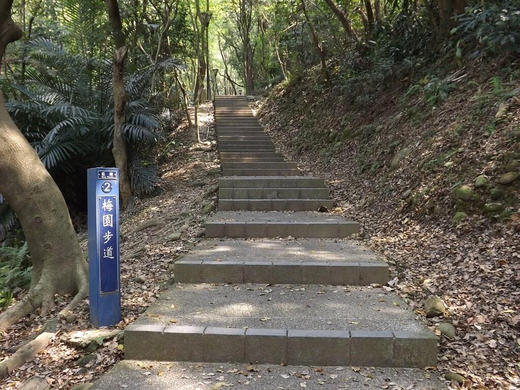 經國梅園的圖片:2 梅園步道