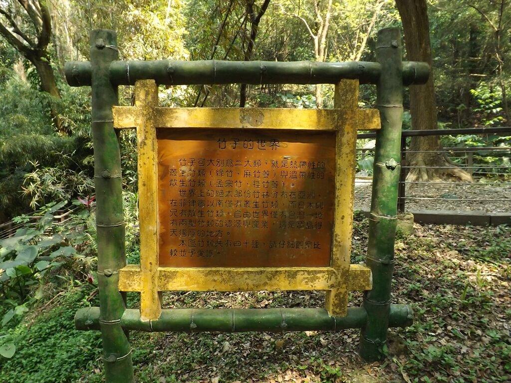 經國梅園的圖片:竹子的世界看板