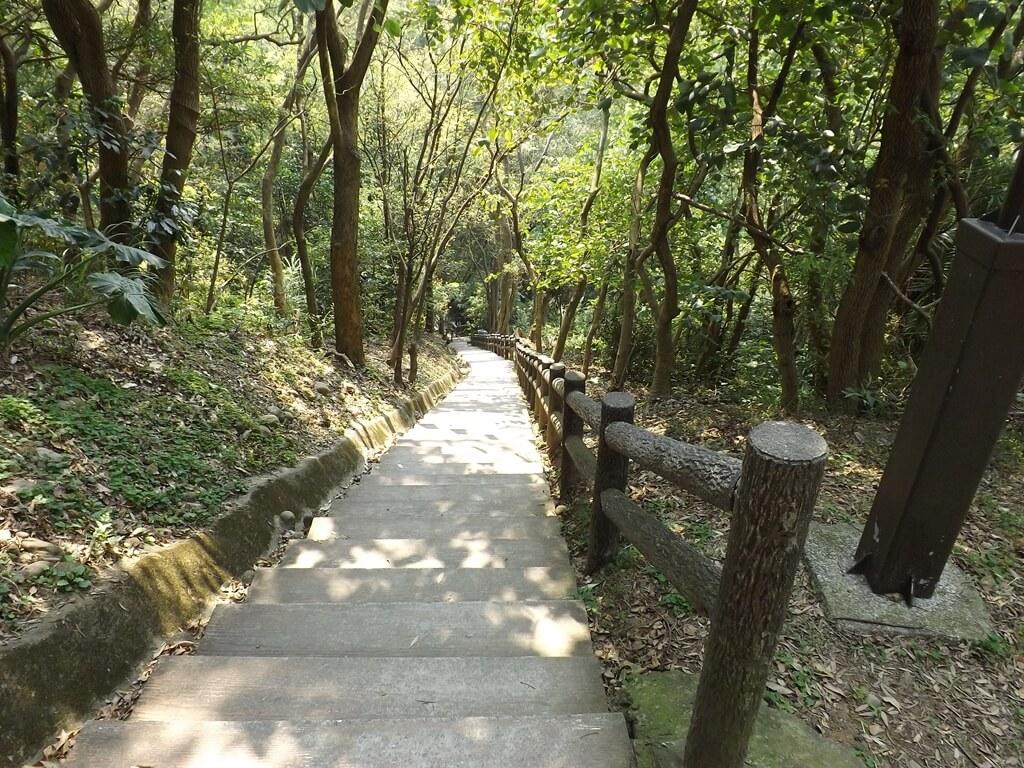 經國梅園的圖片:有扶手的水泥階梯