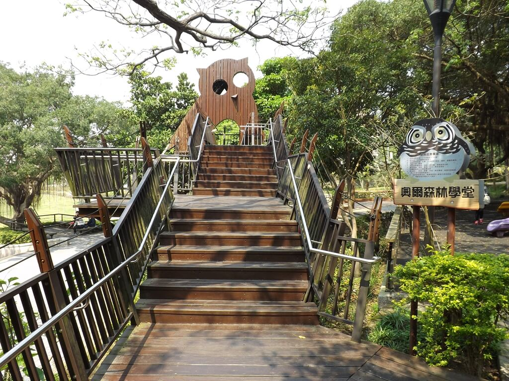 奧爾森林學堂的圖片:走上樹屋的木棧道