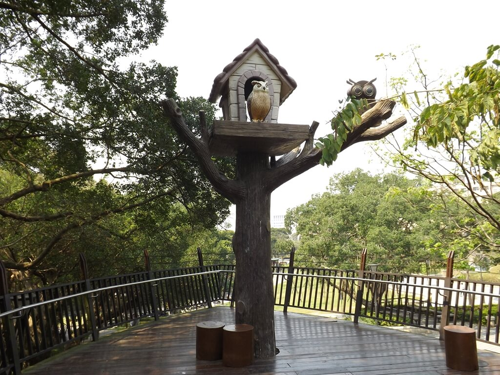 奧爾森林學堂的圖片:可愛的貓頭鷹鳥窩