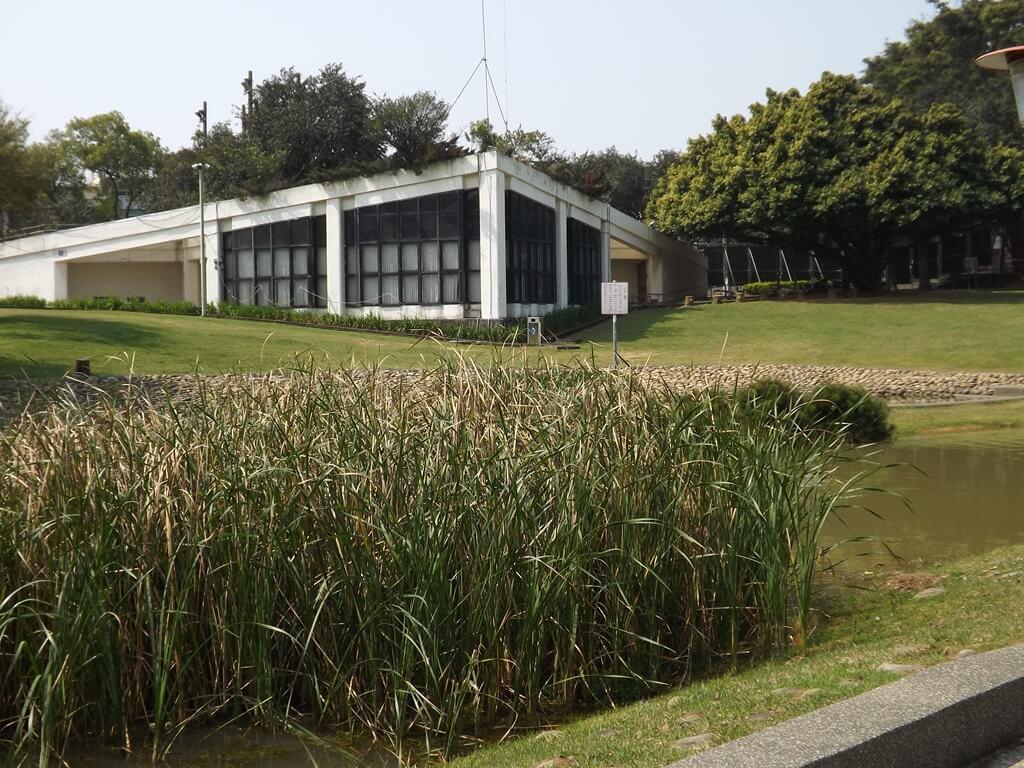 桃園陽明運動公園的圖片:水池中的水生植物及對面的廁所