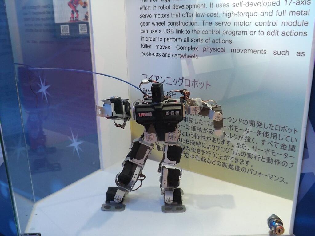 祥儀機器人夢工廠的圖片:標準型機器人