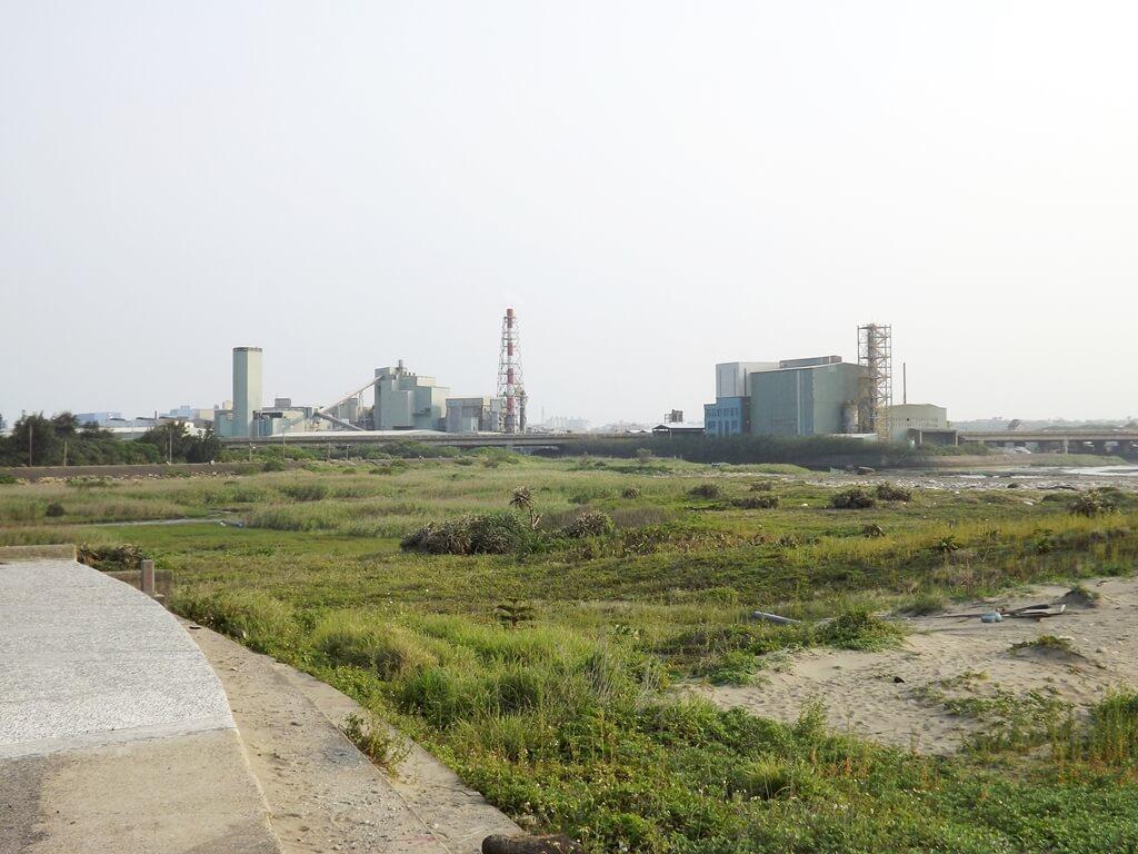 許厝港濕地的圖片:濕地景觀