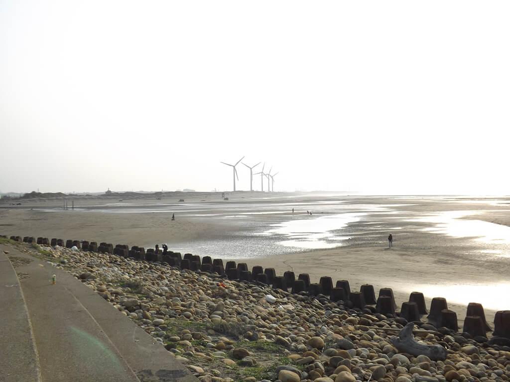 許厝港濕地的圖片:港邊沙灘景觀