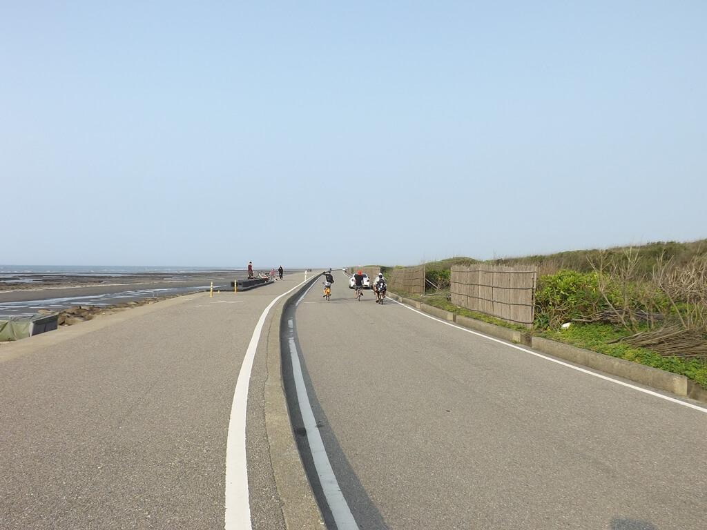 許厝港濕地的圖片:沿著堤防的公路