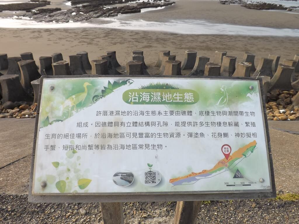 許厝港濕地的圖片:沿海濕地生態介紹