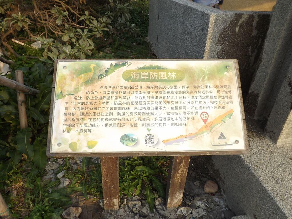 許厝港濕地的圖片:海岸防風林說明看板