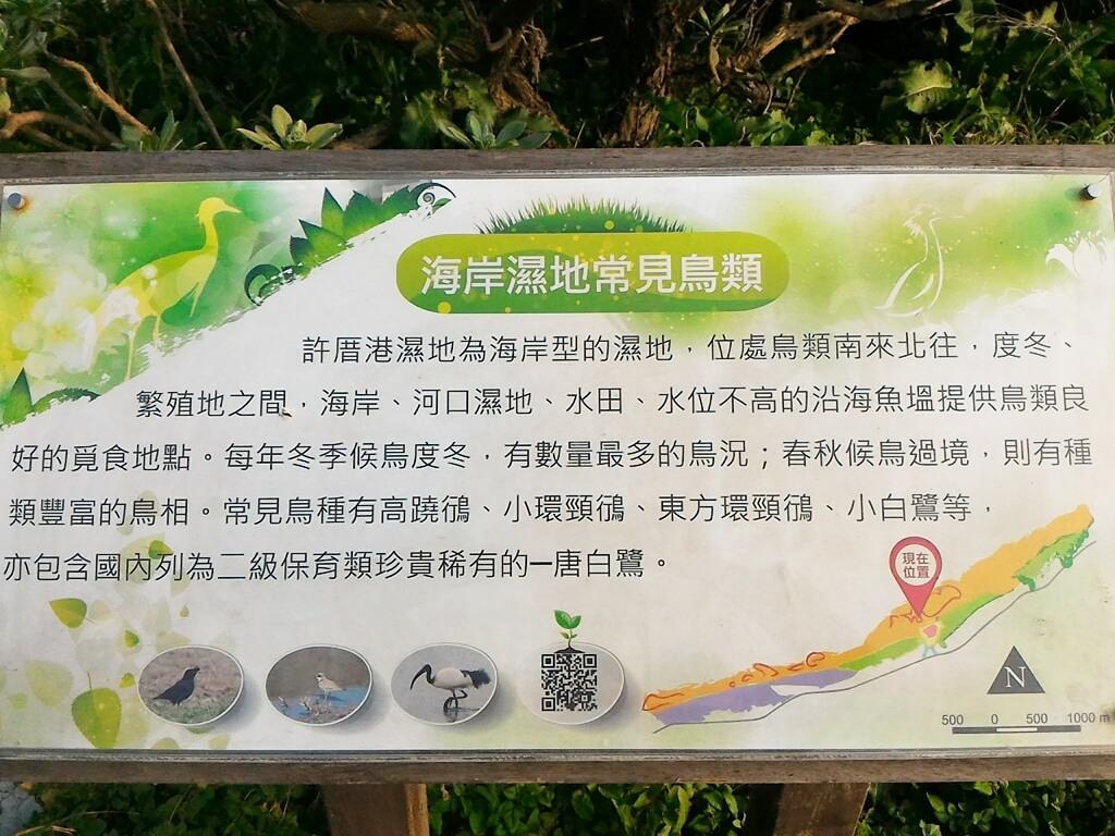 許厝港濕地的圖片:海岸濕地常見鳥類看板