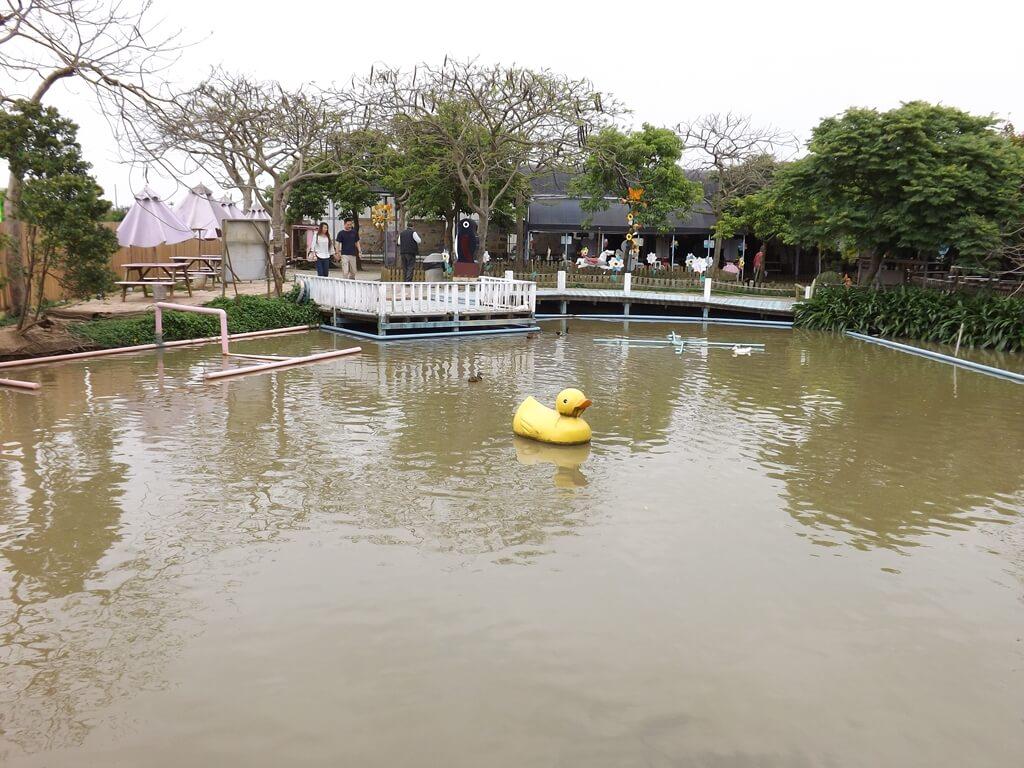 向陽農場的圖片:有鴨子可餵魚的水池