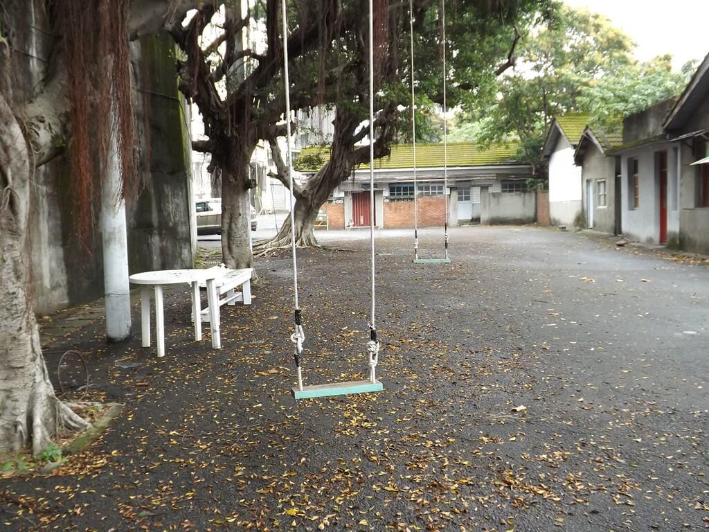憲光二村的圖片:掛在大樹上的盪鞦韆