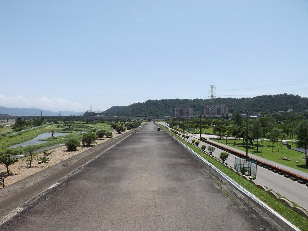 大溪河濱公園的圖片:大漢溪河堤往武嶺橋看去的美景