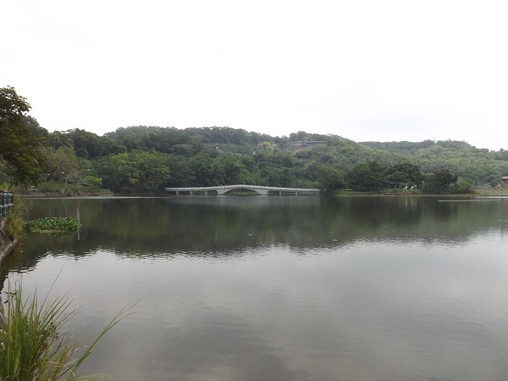 新竹青草湖的圖片:寧靜的青草湖面