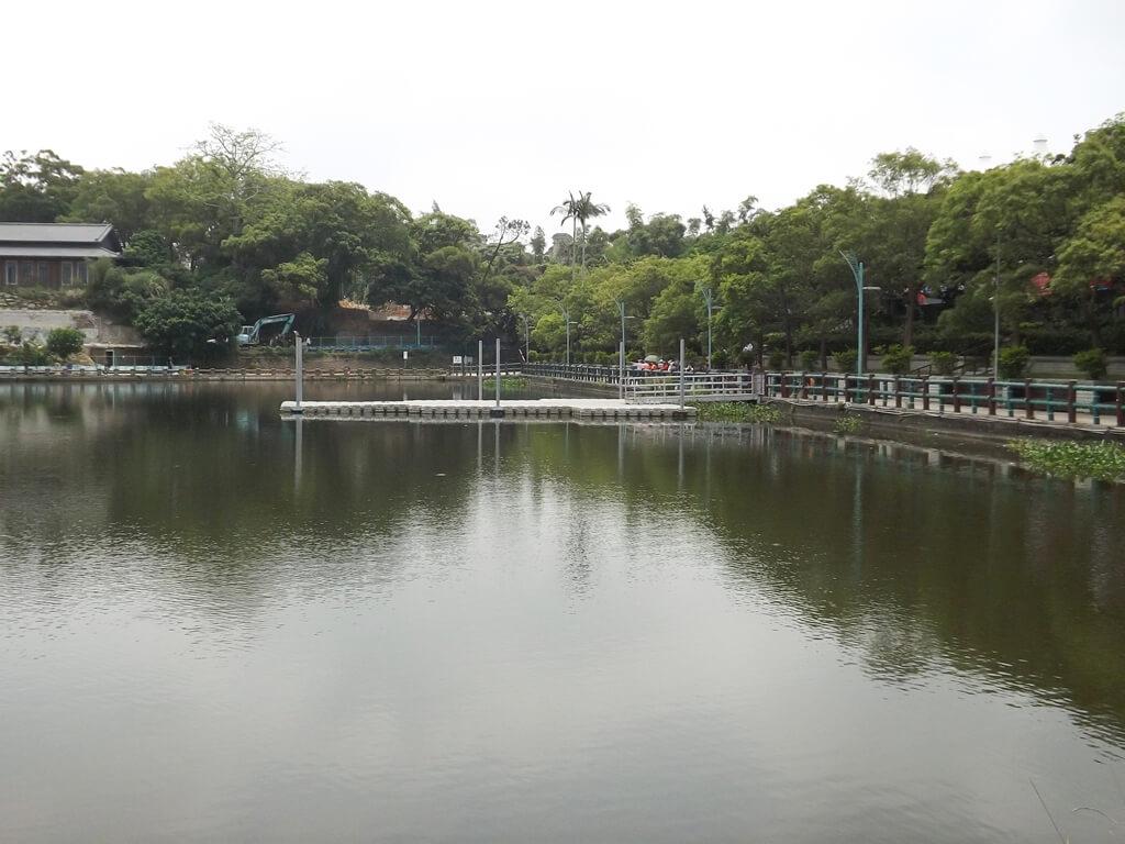 新竹青草湖的圖片:湖面上的戲水平台