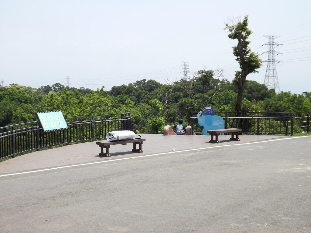 新竹青青草原的圖片:磨石子溜滑梯的最上端