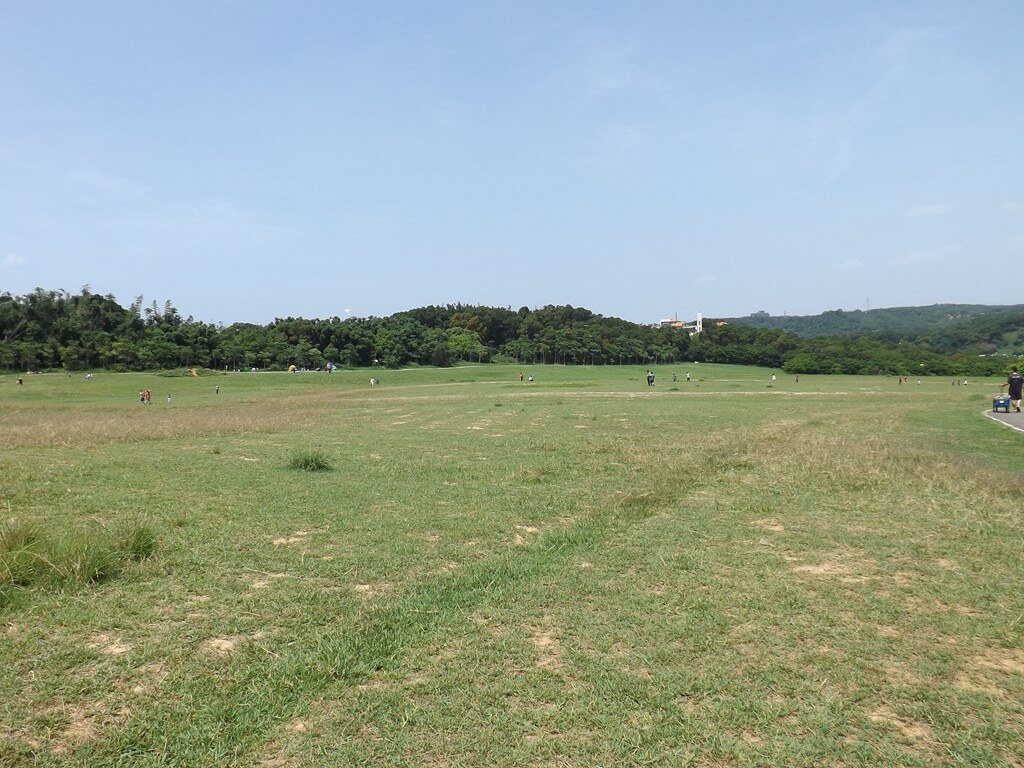 新竹青青草原的圖片:青青草原的綠色大草原