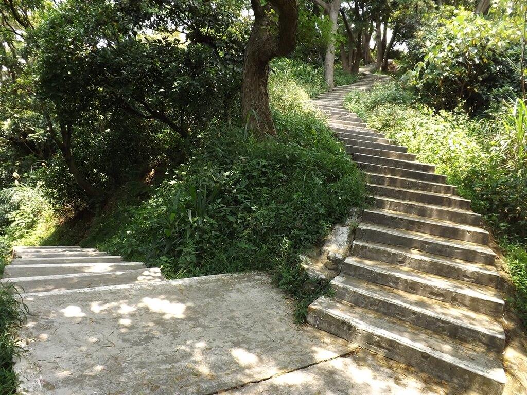 五酒桶山步道的圖片:水泥階梯步道的轉折點