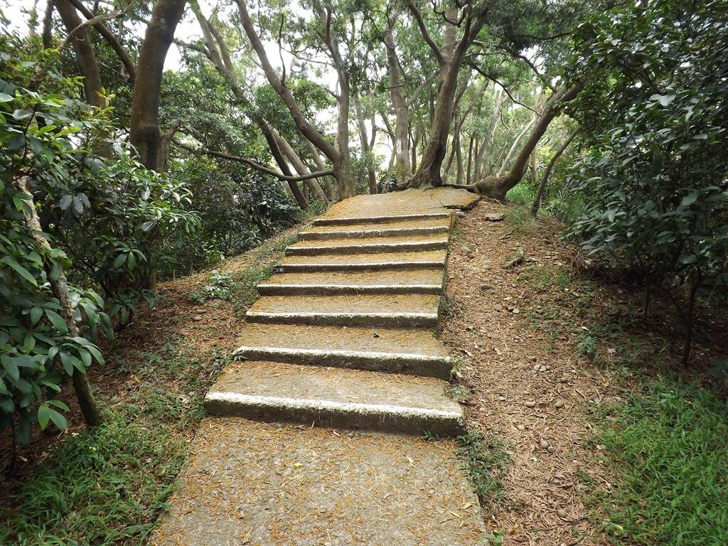 五酒桶山步道的圖片:一小段水泥階梯