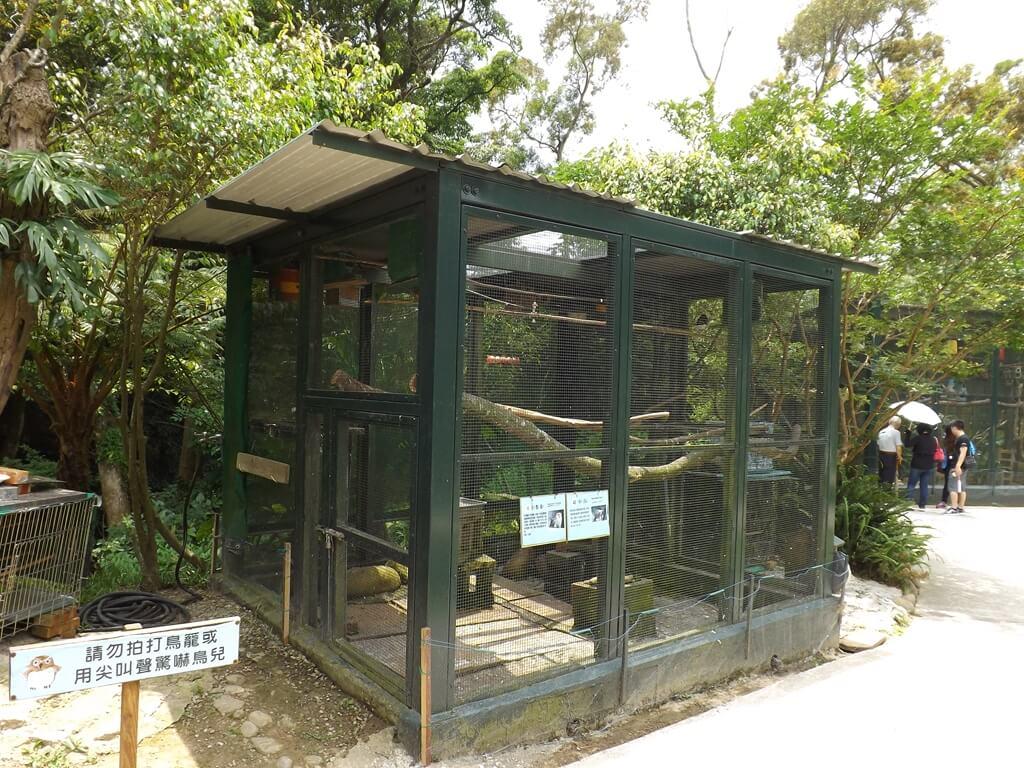 森林鳥花園的圖片:虎皮鸚鵡及織布鳥的鳥籠