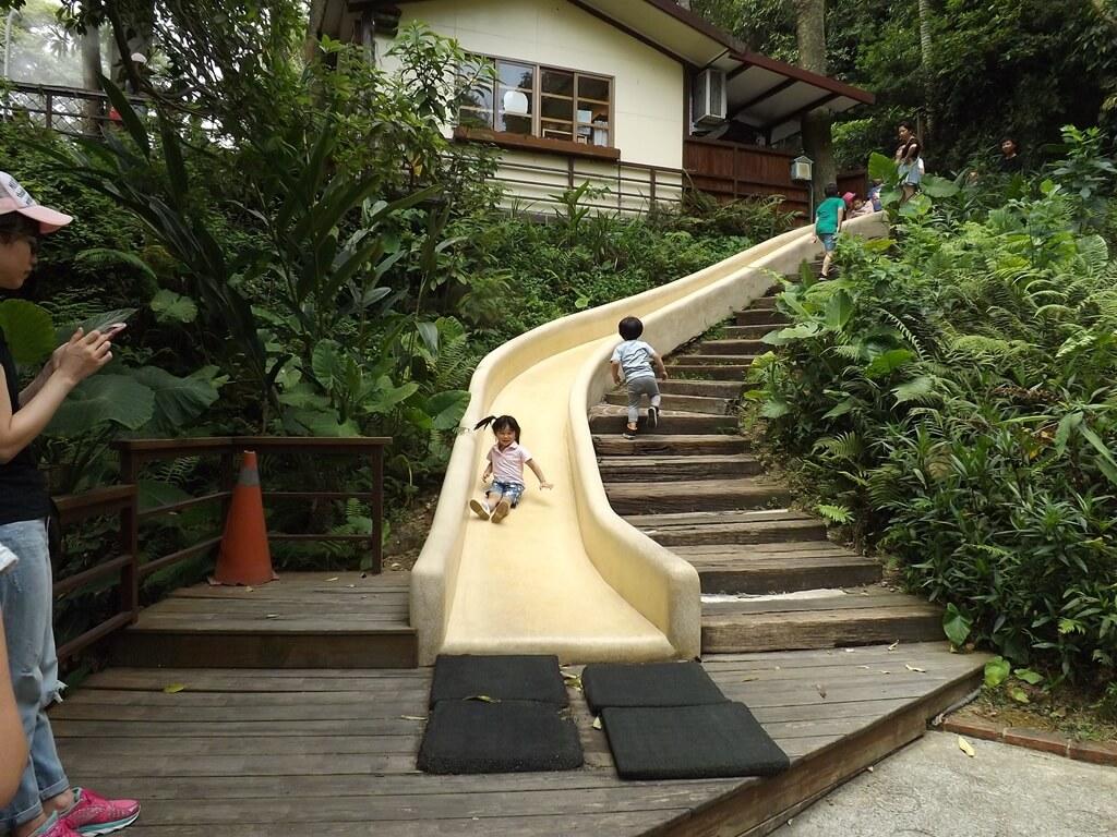 森林鳥花園的圖片:第三層溜到第二層的磨石子溜滑梯
