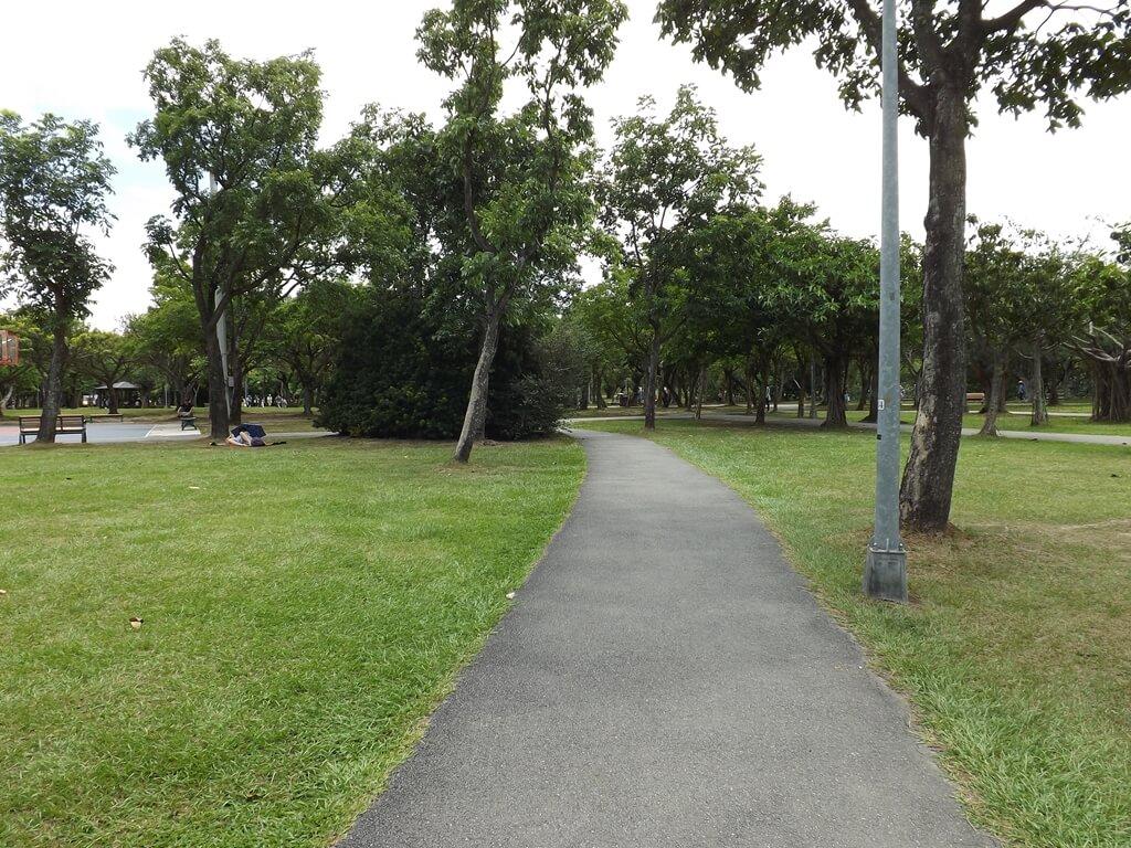大安森林公園的圖片:兩側都是綠草皮的步道