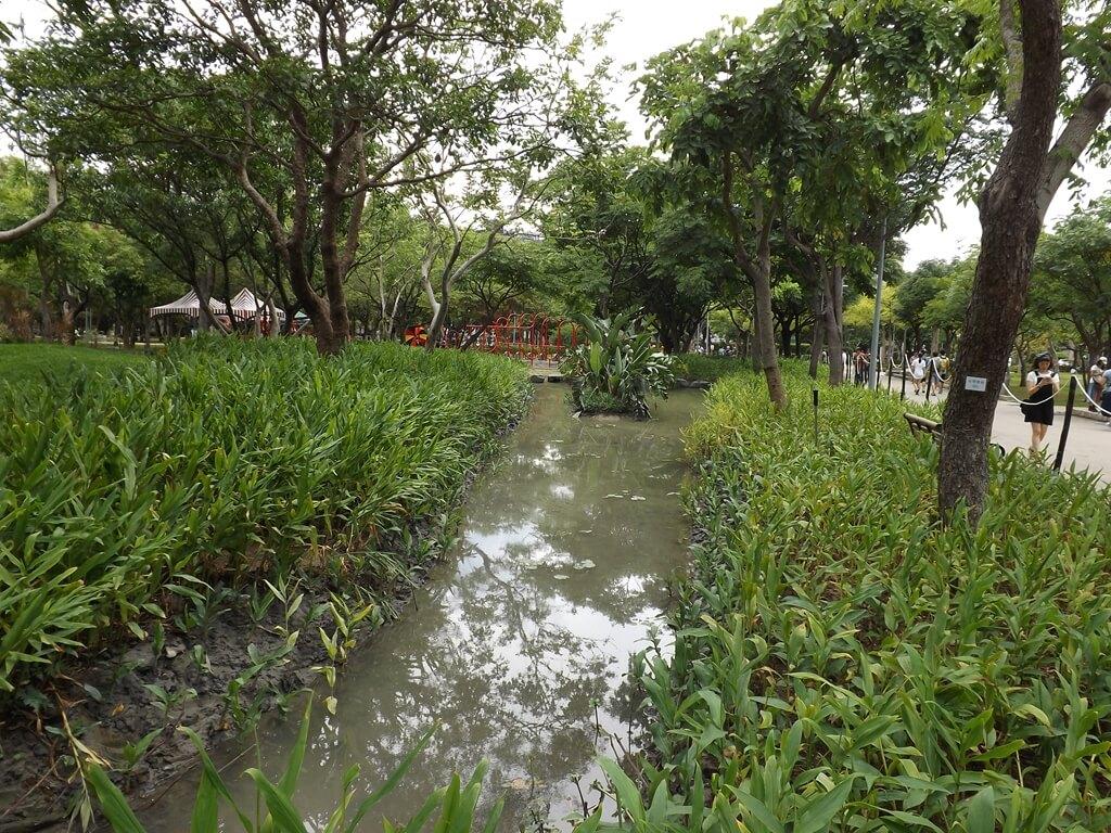 大安森林公園的圖片:沼澤生態水池區