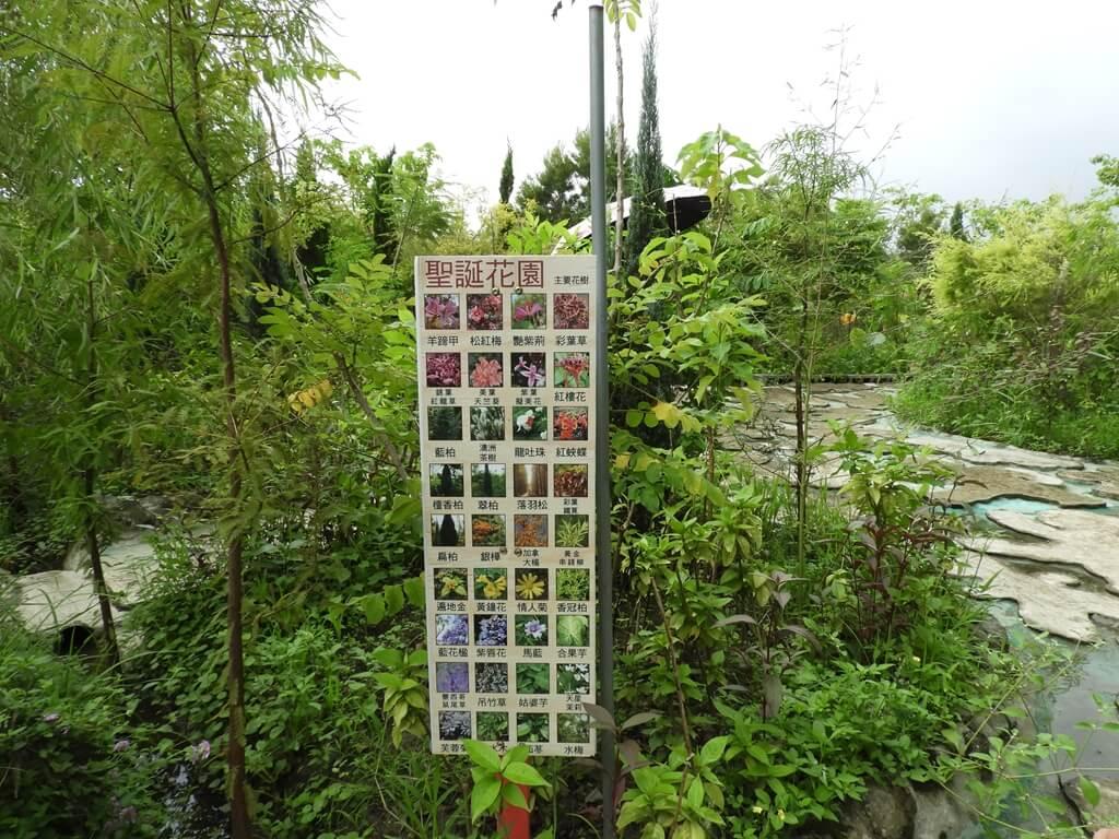 台灣地景花園 Taiwan Land Art Garden的圖片:聖誕花園