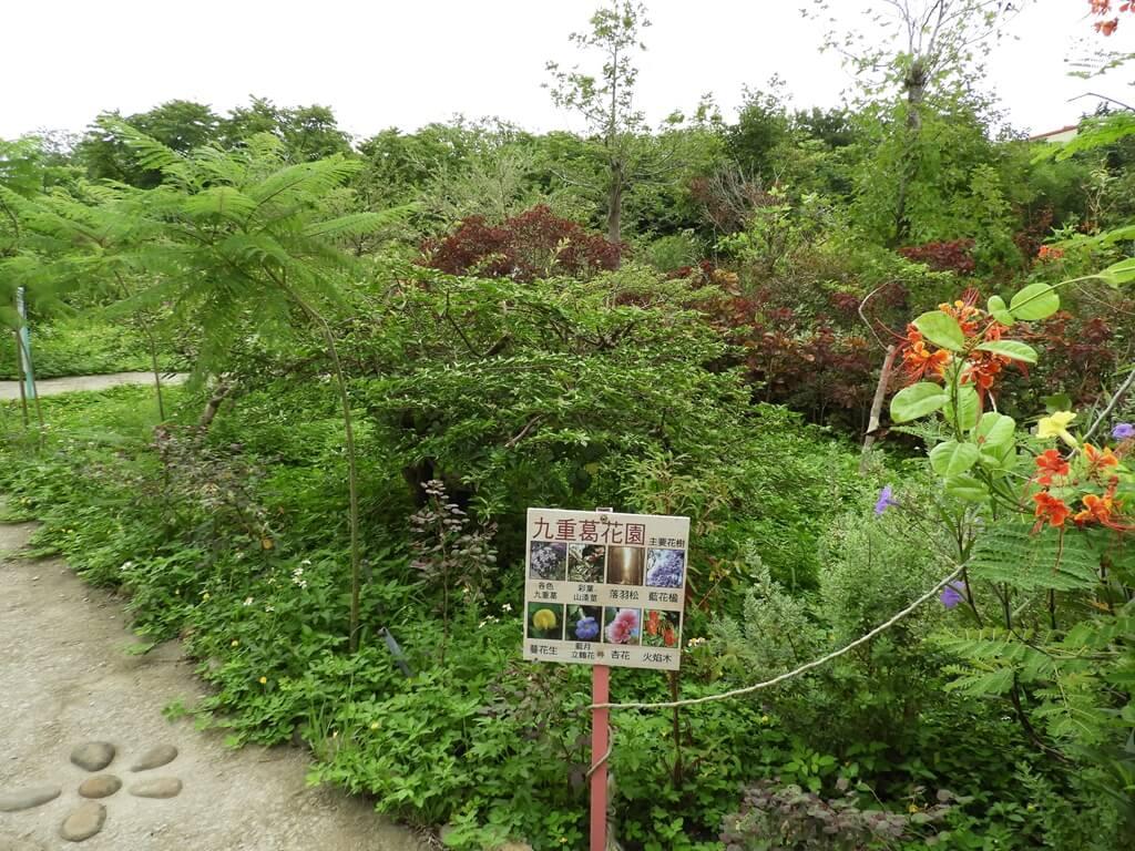 台灣地景花園 Taiwan Land Art Garden的圖片:九重葛花園
