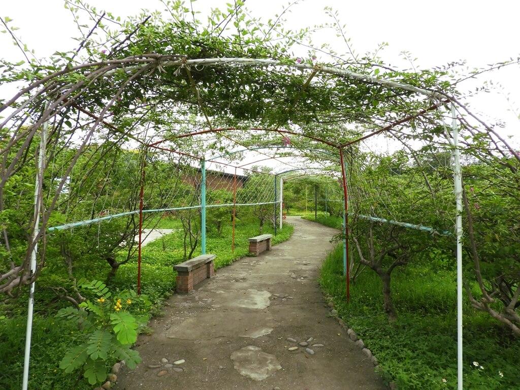 台灣地景花園 Taiwan Land Art Garden的圖片:花架走廊