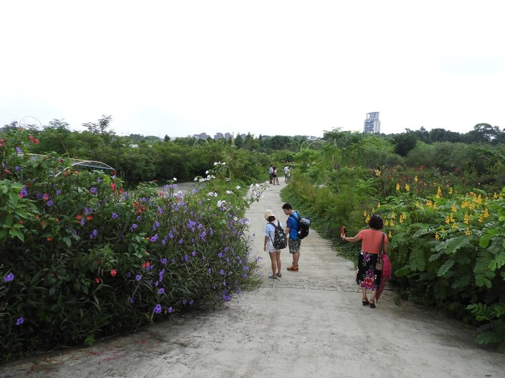 台灣地景花園 Taiwan Land Art Garden的圖片:下面也是很大一片的花園