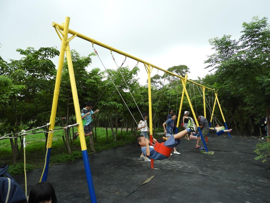台灣地景花園 Taiwan Land Art Garden的圖片:大型盪鞦韆