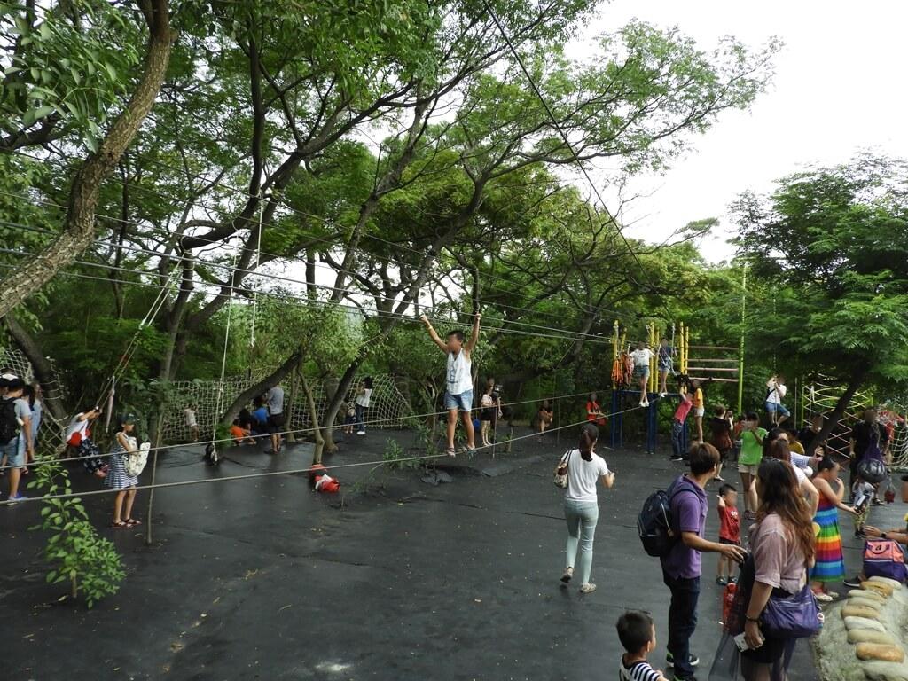 台灣地景花園 Taiwan Land Art Garden的圖片:遊戲區的高空鋼索